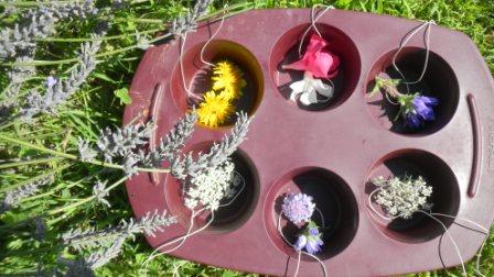 Moule fleurs