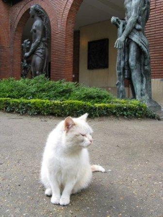 chat musée bourdelle