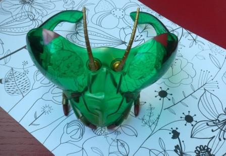 lunettes insectes
