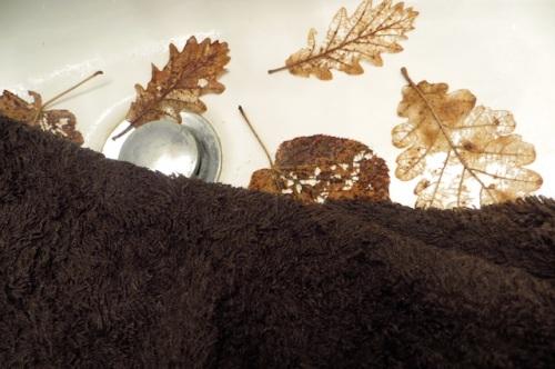 feuilles lavabo