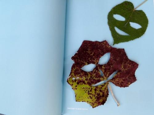 feuilles sourire